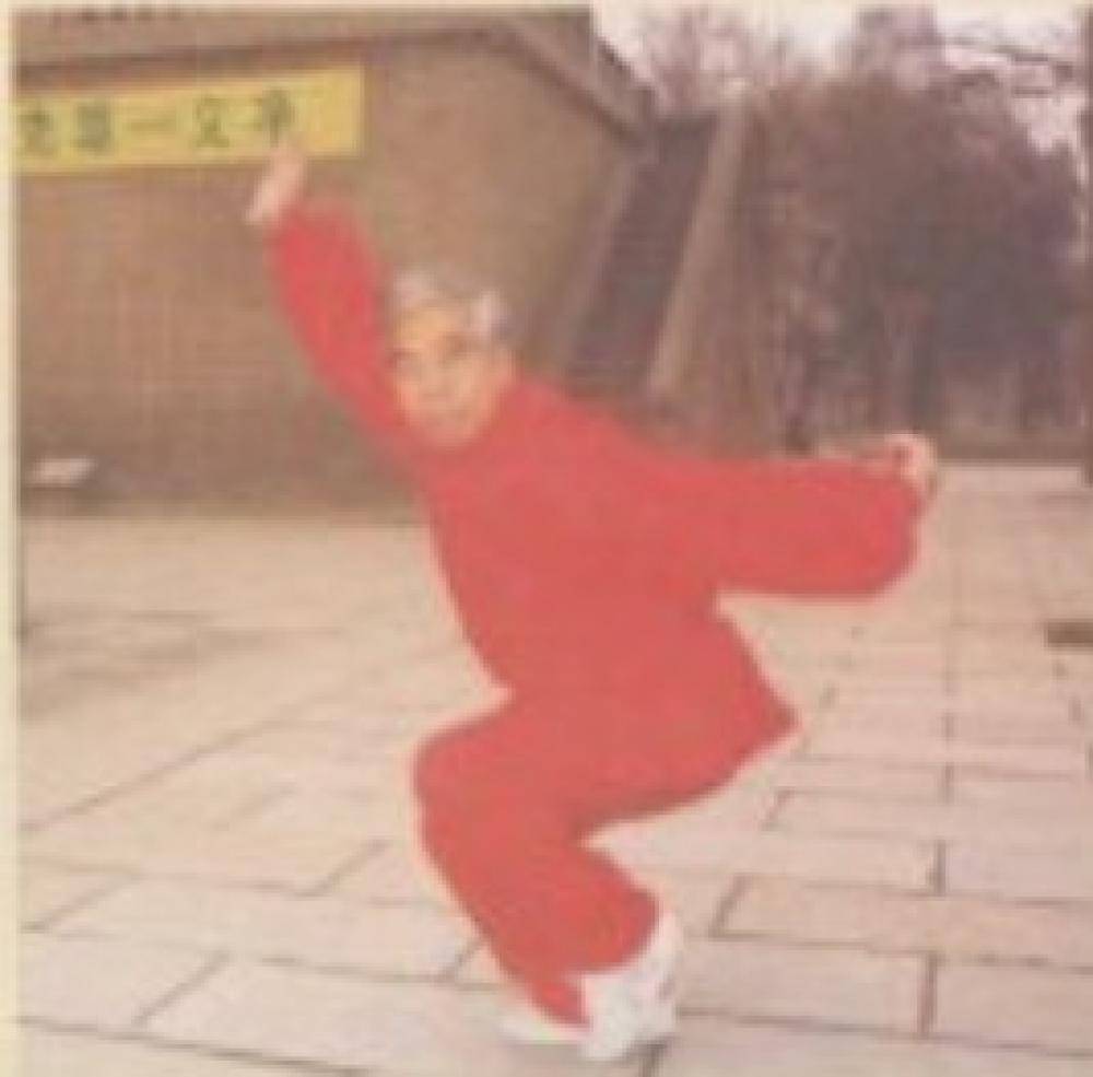 红拳探讨-杨宝生老师早期文章